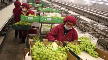 Exportaciones no tradicionales crecieron 9,7% en primeros nueve meses del 2017