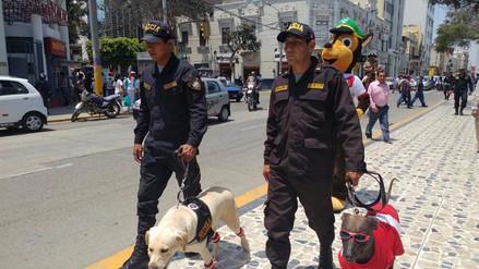 Chiclayo: Policía Montada y Canina alienta a la selección