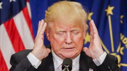 Rostro de Donald Trump aparece en la oreja de un perro