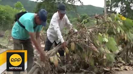 Desbordes en Picota dejó cuantiosos daños en la agricultura