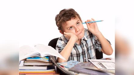 ¿Cuáles son los problemas de aprendizaje más comunes y cómo actuar frente a ellos?