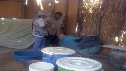 Campaña de eliminación de ratas y pulgas en albergues de Piura