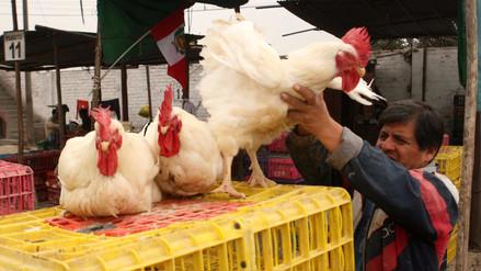 Precio del pollo baja 5.5% en lo que va de noviembre