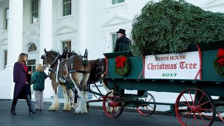 El árbol de Navidad llegó a la Casa Blanca