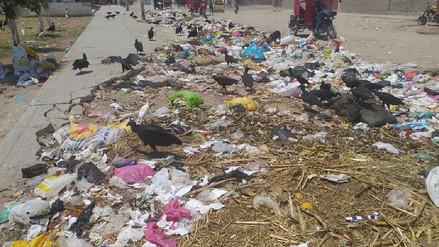 Chiclayo: vecinos cansados de vivir entre basura y gallinazos