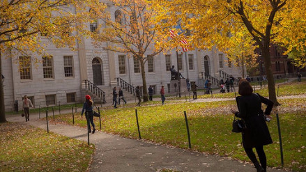 Conoce lo cursos gratuitos online que ofrecen las mejores universidades del mundo