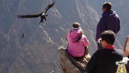 Presidente de AVIT denuncia reducción en afluencia turística de Arequipa