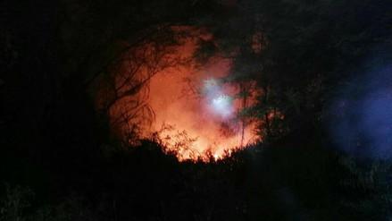 En área boscosa de la empresa Pomalca se produjo un incendio