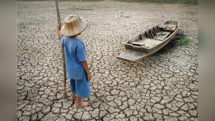 El cambio climático sería el causante de nuevas enfermedades