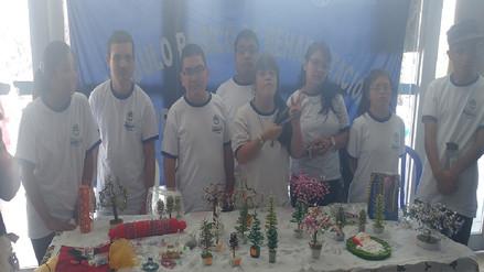 Chiclayo: niños con habilidades especiales elaboran arboles de Navidad