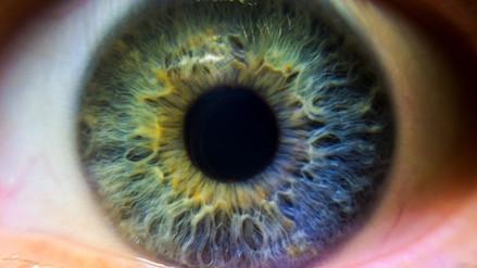 Luxturna, la primera terapia genética para devolver la visión