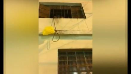 Vídeo | Anciana vive encerrada dentro de una vivienda en Jesús María