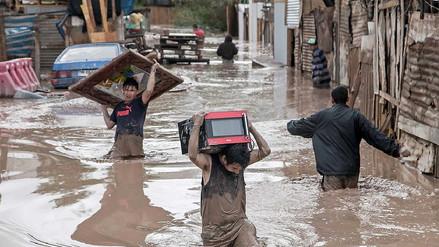 Mongabay | Los 10 reportajes más importantes del 2017 (Parte 2)