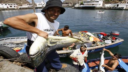 Pescadores podrán disponer de hasta el 90% del saldo contable de sus CTS