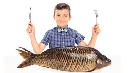 El pescado mejora la inteligencia y calidad de sueño en escolares