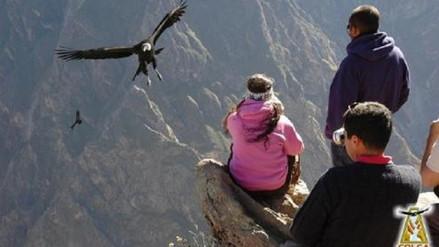 Más de 255 mil turistas visitaron el Colca durante el 2017