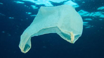 Lo que pones en riesgo al bañarte en playas y piscinas contaminadas