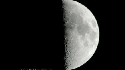 China se prepara para llevar plantas e insectos a la Luna