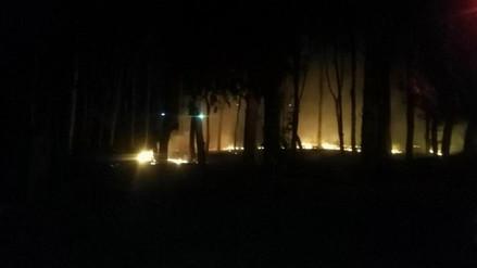 Incendio afectó bosque en Casa Grande