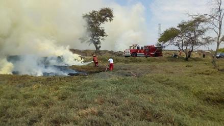Incendio arrasó dos hectáreas de pastizales de la universidad Pedro Ruiz Gallo