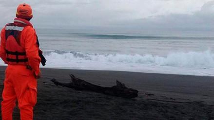 Gobierno de México descartó formación de tsunami tras terremoto en el Caribe