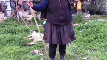 Huancayo: pobladores maltratan canes en protesta por ataques