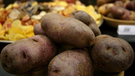 Pequeños productores venderán papa a S/0.80 por kilo desde este miércoles
