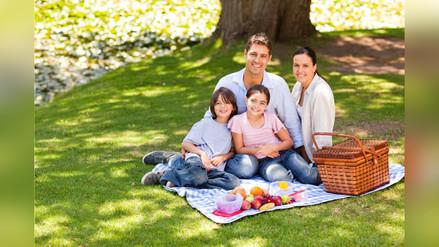 ¿Cómo organizar un picnic familiar?