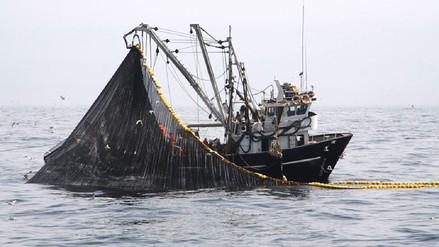 Produce: El 26 de enero finaliza segunda temporada de pesca de anchoveta