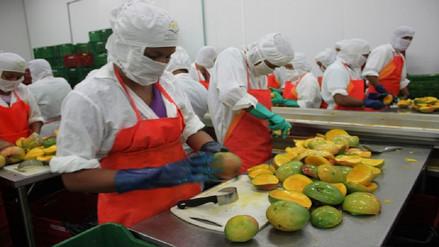 Se espera recuperar nivel de las exportaciones lambayecanas