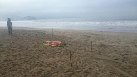 Mar varó cuerpo de joven que desapareció en la playa Atahualpa