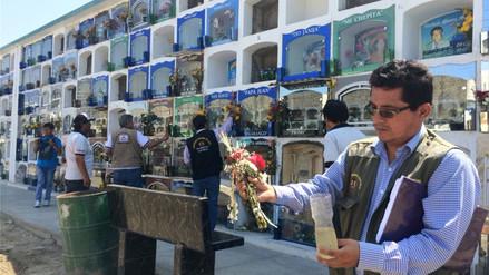Cementerio de Chimbote es considerado foco de proliferación del vector del dengue