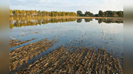 La Niña costera: ¿cómo afectará este peculiar fenómeno a la temporada de verano?..
