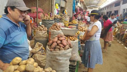 Sobreproducción de papa origina disminución de su precio en Chiclayo