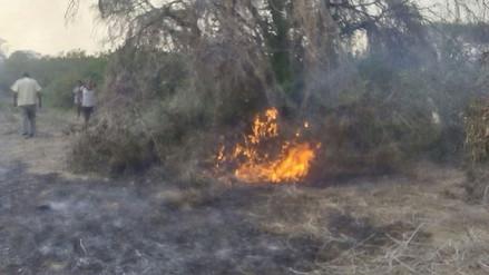 Incendio afecta 1 700 hectáreas de pastizales en distrito de Salas