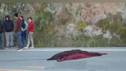 Combi atropella y mata a sexagenario en Cajamarca