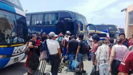 Chimbote: buses son fumigados por presencia de pulgas y chinches