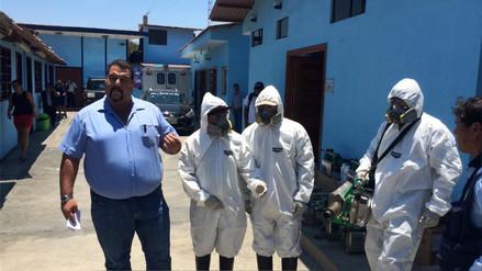 Coishco: alistan fumigación contra el dengue por incremento de índice aédico