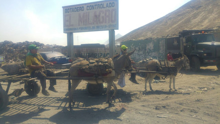 Segat critica a municipalidades que no cuidan botadero en Trujillo