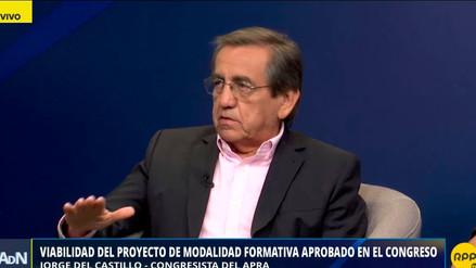 """Del Castillo dijo que el debate de la ley de modalidades formativas laborales """"se ha contaminado"""""""