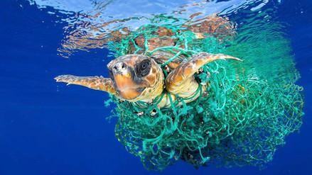 Los desechos plásticos, una grave amenaza para la vida en el mar y en la tierra