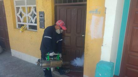 Anuncian fumigación en distrito de Coishco por presencia del vector del dengue