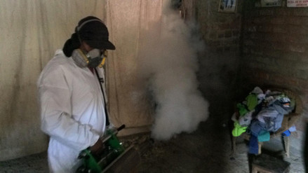 Unas 471 casas de Coishco no se fumigaron contra el dengue por desidia de población
