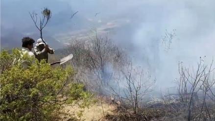 Capacitan brigada para frenar continuos incendios forestales en Lambayeque