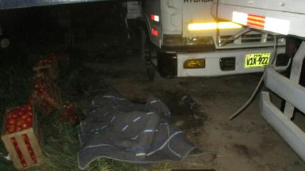 Joven falleció atropellado por camión conducido por su hermano en Majes