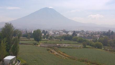 Mil toneladas de papa excedente comprarán en Arequipa