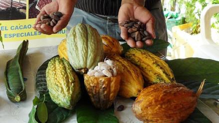 Piura lidera en producción de alimentos orgánicos