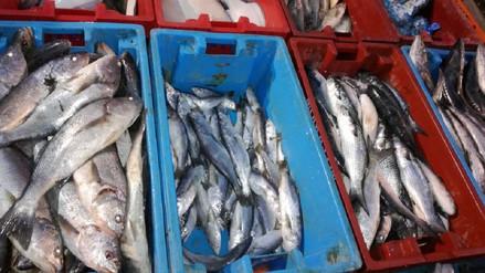 Incautan pescado en mal estado en operativo por Semana Santa en Trujillo
