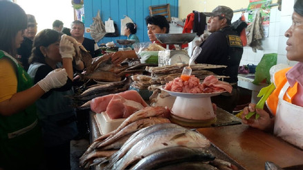 Decomisan pescado en mal estado en operativos por Semana Santa