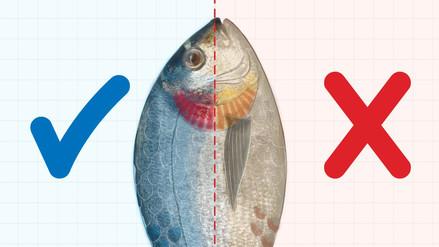 Semana Santa: El pescado pierde el 40% de sus nutrientes cuando se come frito